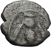 EPESUS Ephesos IONIA 405BC Bee Stag's Head Authentic Ancient Greek Coin i48236