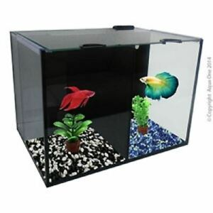 Fighter Betta Fish Villa Duo Tank with Heater and Filter