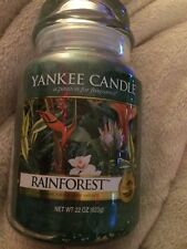 Large Yankee Candle Rainforest