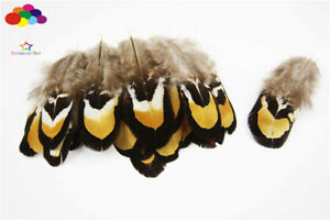 10-100 PCS Natural Pheasant Tail Feathers 2-4 inch/4-10 cm Carnival Diy headress