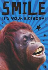 ANIMAL ANTIC'S CRAZY Monkey dicendo SORRISO IT'S YOUR BIRTHDAY GREETING Card 1stp & P