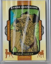 Irish Terrier 2018 Ud Goodwin Champions Canine Companions Patch Terrier