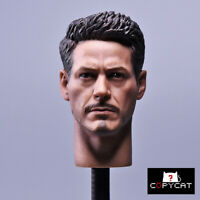 "1/6 Tony Stark Iron Man Head Sculpt  Model F 12"" Phicen/HT Male  Figure Body"