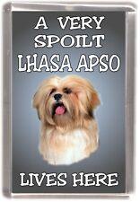 Lhasa Apso Dog Fridge Magnet  A VERY SPOILT LHASA APSO LIVES HERE
