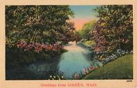 Postcard Greetings From Goshen Massachusetts Wooded Park Lake