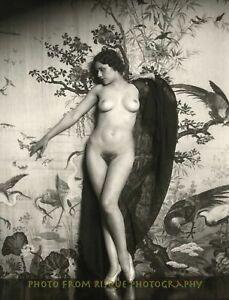 "Vintage Nude Woman Naomi Johnson 8.5x11"" Photo Print Alfred Cheney Johnston"