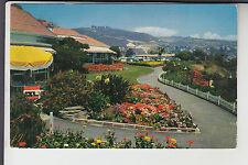 A Walk in Heisler Park Laguna Beach CA  California
