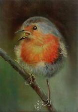 Original ACEO EUROPEAN ROBIN Oil Hand Painted Bird Garden Wildlife Signed by JV