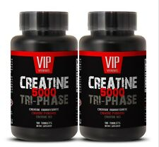 creatine bcaa supplement - Creatine Tri-Phase 5000mg - energy supplement 2B