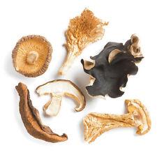 Forest Blend Mushrooms, Dried - 1oz Kraft Bag - Nomad Spice Co.
