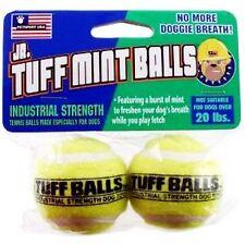 Petsport USA Jr. Mint Tennis Balls 2 Pack