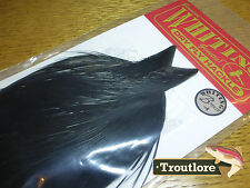 WHITING FARMS DRY FLY COCK NECK BLACK WHOLE NEW BRONZE FLY TYING CAPE FEATHERS