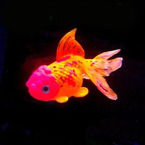 Glow In The Dark Artificial Aquarium Goldfish Ornament Fish Tank Jellyfish new