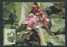 Onu Viena Mk 1990 Flora Plantas Medicinales maximum tarjeta Carte maximum card mc d7281