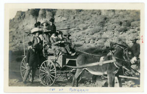 Antique Photo Donkey Mule Team Wagon Cart Carriage Kingman Arizona ? Animals 46