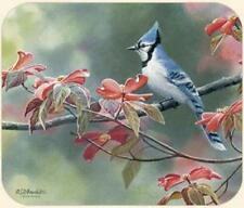 MOUSE PAD-Blue Jay--Printed in U.S.A.--Polyester/Neoprene  **Beautiful**