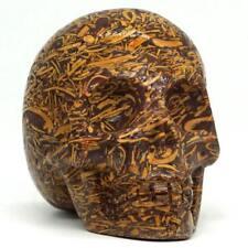 Fossil Elephant Skin Jasper Stone Human Skull Carved Crystal Reki Healing Decor