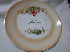 Alanson Mi Mich Michigan, souvenir plate