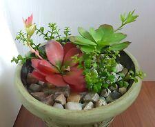 4 Artificial Succulents Burgeon Lotus With Heart Leaf Bush Plastic Grass