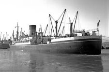mc3158 - Shaw Savill Line Cargo Ship - Suevic - photo 6x4