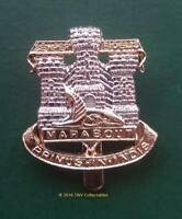 THE DEVONSHIRE & DORSET REGIMENT CAP BADGE (F&S)