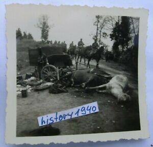 3.Foto KARMELAVA - LITAUEN Zerbombte Stellung in der Ortschaft.