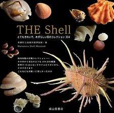 The Shell Beautiful and Rare Shellfish Collection Book 304