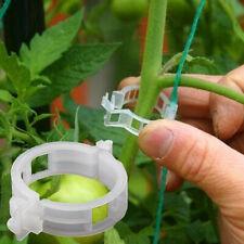 50/100Pcs Tomato Veggie Home Garden Plant Support Clips Trellis Twine Greenhouse
