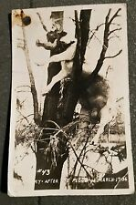 POSTCARD OF JOHNSTOWN PA. FLOOD 1936  #43 COW IN TREE HISTORICAL ITEM!