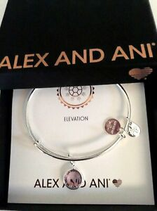 Alex and Ani June Color Code Amethyst Bangle Bracelet Shiny Silver NWTBC