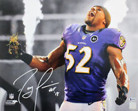 "Ravens Ray Lewis ""HOF 18"" Authentic Signed 16x20 Photo Spotlight BAS Witnessed"