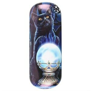 Witches Apprentice  - Cat Glasses  Sunglasses Case by Lisa Parker-  Gothic