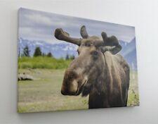 Elch Natur Rentier Leinwand Bild Wandbild Kunstdruck L0136