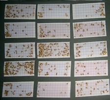 More details for 10 x diamond clothes moth trap pheromone refills- use by april 2025