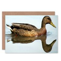 Birthday Swimming Brown Duck Blank Greeting Card With Envelope