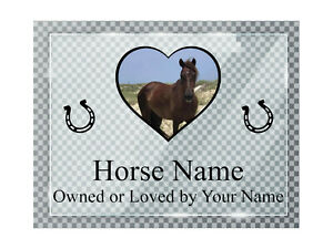 A013 Custom Personalised Horse Pony Donkey Stable ACRYLIC Plaque Sign Door Gate