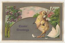 Easter Greetings Cute Baby Chick Hatching Egg with Flowers Vintage 1908 Postcard