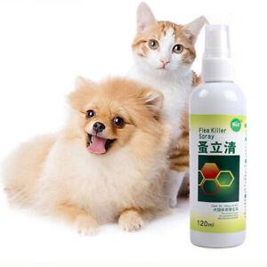 120ml Flea Killer Spray Flea Treatment for Dogs Puppy Cats Kitten