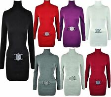 Polo Neck/Roll Neck Patternless Jumper Dresses for Women