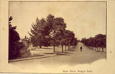 WEST AUSTRALIA:  KING'S PARK  EARLY 1900s   AN OLD POST CARD   NO RESERVE !!