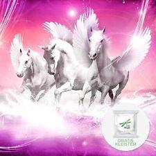 MAGIC ROSA EINHORN Vlies Fototapete Fantasy Pegasus Pferd Märchen Kinder 849