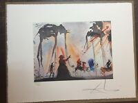 Salvador Dali Litografia 50 x 65 Bfk Rives Timbro a secco Firmata a Matita D2072