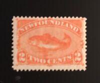 Stamps Canada Newfoundland Sc48 2c red orange Codfish MH OG-See description