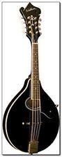Washburn, 8-String Mandolin, Black (M1SDLB-A)
