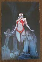Vampirella #7 Jenny Frison Retailer Incentive 2014 Virgin Variant Comic Book
