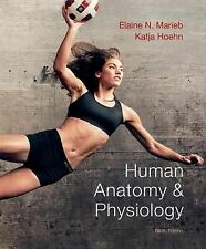 Human Anatomy & Physiology Marieb and Hoehn (9th edition) 9780321743268 bundle