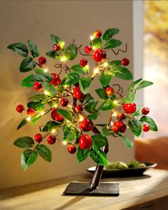 LED Baum APFEL mit 40 LEDs 48cm hoch Lichterbaum Herbst Frühling Lichterzweig