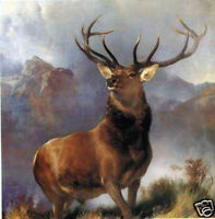 CHOP212 high quality 100% hand-painted animals deer oil painting art on canvas