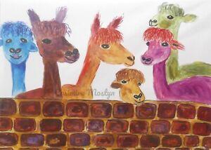"Greeting card, Colourful Alpacas  7"" by 5""  By casimira Mostyn"