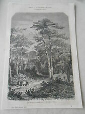 1858  Une vue dans la Forêt d'Archachon  Gravure Article de presse